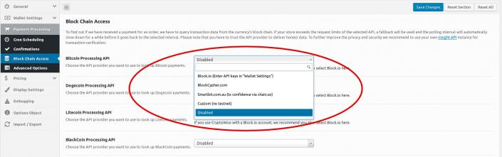 payment-processing-api